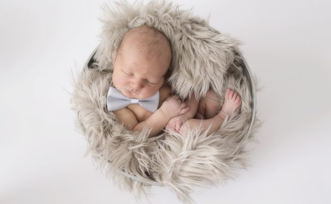 Newborn Portraits 4