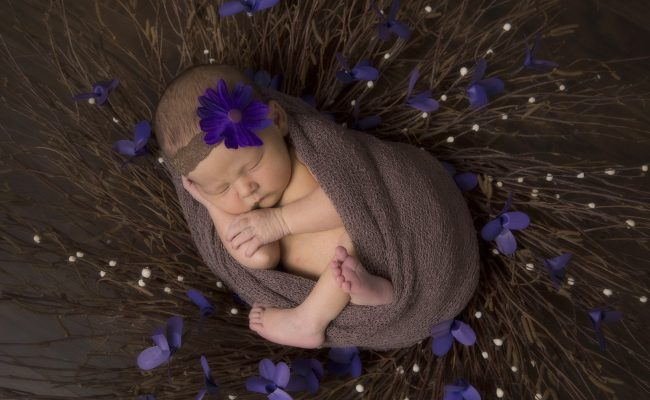 Newborn Portraits 9