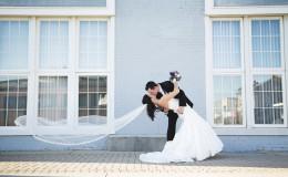Wedding images 6